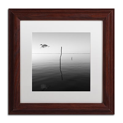 Trademark Fine Art Fly by Moises Levy 11 x 11 White Matted Wood Frame (ALI1092-W1111MF)
