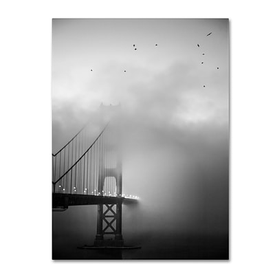 Trademark Fine Art Golden Gate and Birds by Moises Levy 18 x 24 Canvas Art (ALI1095-C1824GG)
