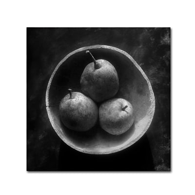 Trademark Fine Art Circulo de Peras by Moises Levy 24 x 24 Canvas Art (ALI1102-C2424GG)