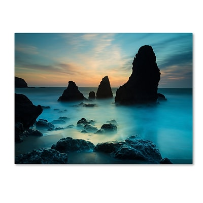 Trademark Fine Art Rodeo Beach I by Moises Levy 24 x 32 Canvas Art (ALI1116-C2432GG)