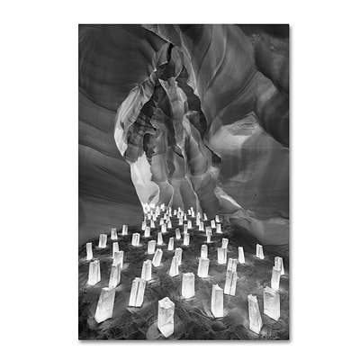 Trademark Fine Art Candle Canyon II by Moises Levy 30 x 47 Canvas Art (ALI1128-C3047GG)