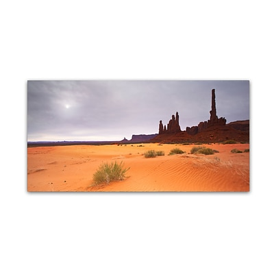 Trademark Fine Art Monument Valley Panorama I by Moises Levy 10 x 19 Canvas Art (ALI1143-C1019GG)