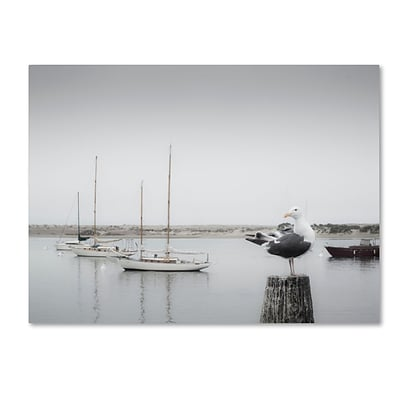 Trademark Fine Art Four Boats & Seagull by Moises Levy 18 x 24 Canvas Art (ALI1148-C1824GG)