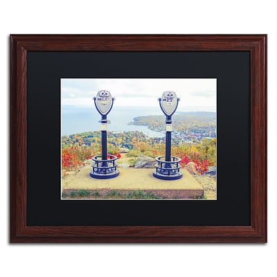 Trademark Fine Art Tower Viewers by Preston 16 x 20 Black Matted Wood Frame (EM0509-W1620BMF)
