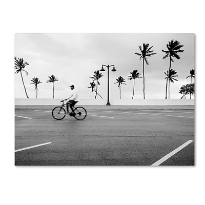 Trademark Fine Art Florida Beach Bike by Preston 35 x 47 Canvas Art (EM0515-C3547GG)