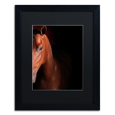 Trademark Fine Art Kentucky horse Intense by Preston 16 x 20 Black Matted Black Frame (EM0535-B1620BMF)