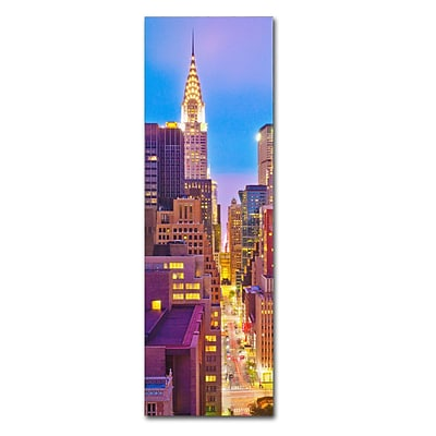 Trademark Fine Art NY Vertical Panoramic by Preston 10 x 32 Canvas Art (EM0549-C1032GG)