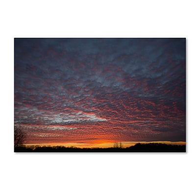 Trademark Fine Art Amazing Winter Sunset by Kurt Shaffer 30 x 47 Canvas Art (KS01063-C3047GG)