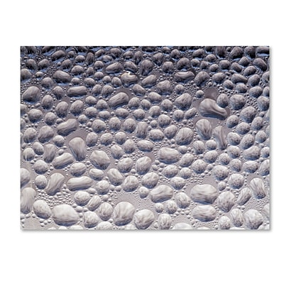 Trademark Fine Art Condensation on a Cold Window 2 by Kurt Shaffer 18 x 24 Canvas Art (KS01065-C1824GG)