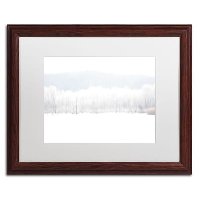 Trademark Fine Art Abstract Winter Beaver Marsh by Kurt Shaffer 16 x 20 White Matted Wood Frame (KS01091-W1620MF)