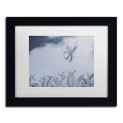 Trademark Fine Art Frost Fairy on a Window by Kurt Shaffer 11 x 14 White Matted Black Frame (KS01095-B1114MF)