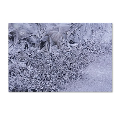 Trademark Fine Art Gradation of Frost on a Window by Kurt Shaffer 16 x 24 Canvas Art (KS01098-C1624GG)