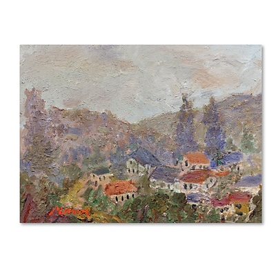 Trademark Fine Art Misty Morning by Manor Shadian 35 x 47 Canvas Art (MA0614-C3547GG)
