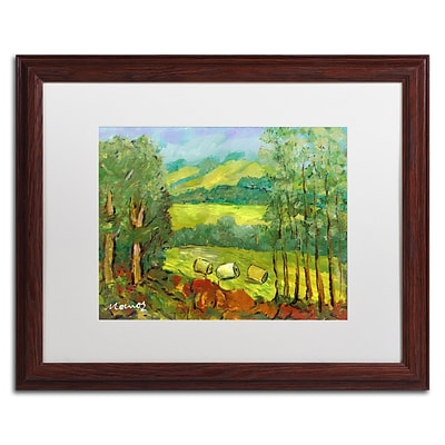Trademark Fine Art Balds in the Field by Manor Shadian 16 x 20 White Matted Wood Frame (MA0622-W1620MF)
