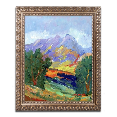 Trademark Fine Art Autumn Amber California North by Manor Shadian 11 x 14 Ornate Frame (MA0623-G1114F)