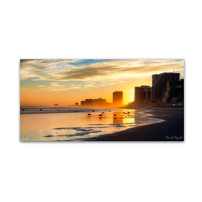 Trademark Fine Art Atlantic City Sunset by David Ayash 10 x 19 Canvas Art (MA0626-C1019GG)