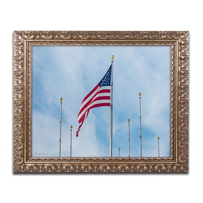 Trademark Fine Art Red White & Blue by David Ayash 11 x 14 Ornate Frame (MA0640-G1114F)