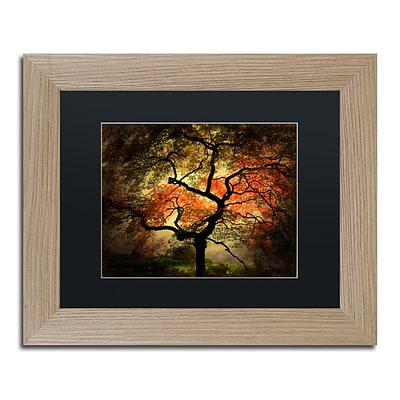 Trademark Fine Art Japanese by Philippe Sainte-Laudy 11 x 14 Black Matted Wood Frame (PSL020-T1114BMF)