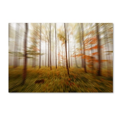 Trademark Fine Art Autumn Go Fast by Philippe Sainte-Laudy 22 x 32 Canvas Art (PSL0419-C2232GG)