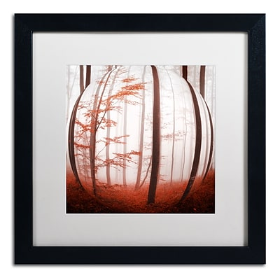 Trademark Fine Art Autumn to Burn by Philippe Sainte-Laudy 16 x 16 White Matted Black Frame (PSL0420-B1616MF)