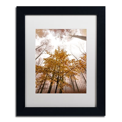 Trademark Fine Art Foggy Days by Philippe Sainte-Laudy 11 x 14 White Matted Black Frame (PSL0428-B1114MF)