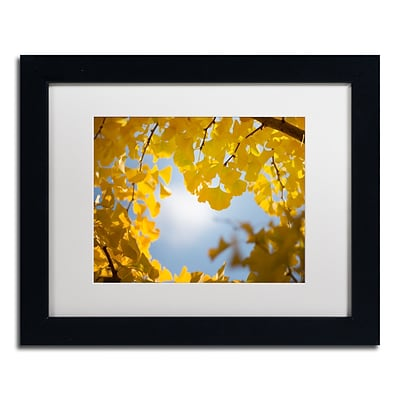 Trademark Fine Art Ginkgo Leaves in Autumn by Philippe Sainte-Laudy 11 x 14 White Matted Black Frame (PSL0432-B1114MF)