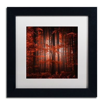 Trademark Fine Art Red Parallel Universe by Philippe Sainte-Laudy 11 x 11 White Matted Black Frame (PSL0444-B1111MF)