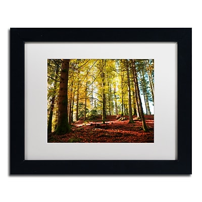 Trademark Fine Art The Autumn Bench by Philippe Sainte-Laudy 11 x 14 White Matted Black Frame (PSL0451-B1114MF)