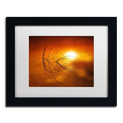 Trademark Fine Art Touch of Last Light by Philippe Sainte-Laudy 11 x 14 White Matted Black Frame (PSL0457-B1114MF)
