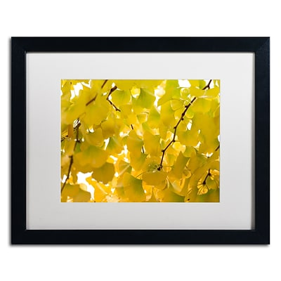 Trademark Fine Art Yellow Autumn by Philippe Sainte-Laudy 16 x 20 White Matted Black Frame (PSL0460-B1620MF)