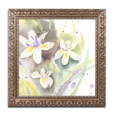 Trademark Fine Art White Iris by Sheila Golden 16 x 16 Ornate Frame (SG5734-G1616F)