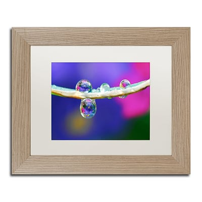 Trademark Fine Art Double Drops by Steve Wall 11 x 14 White Matted Wood Frame (SW0007-T1114MF)