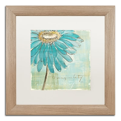 Trademark Fine Art Spa Daisies III by Chris Paschke 16 x 16 White Matted Wood Frame (WAP0057-T1616MF)