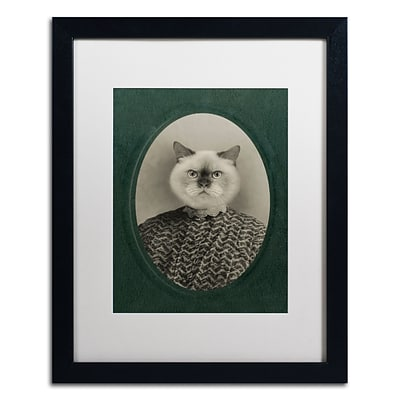 Trademark Fine Art Cat Series #1 by J Hovenstine Studios 16 x 20 White Matted Black Frame (ALI1330-B1620MF)