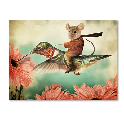 Trademark Fine Art Catching A Ride On A Hummingbird by J Hovenstine Studios 24 x 32 Canvas Art (ALI1361-C2432GG)