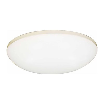 Aurora Lighting LED Flush Mount; White (STL-VME661154)