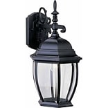 Aurora Lighting A19 Outdoor Wall Sconce Lamp (STL-VME582312)