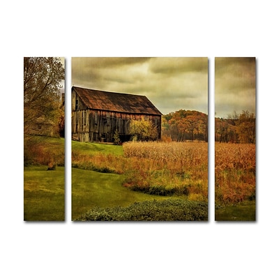 Trademark Fine Art Old Barn on Rainy Day by Lois Bryan 30 x 41 Multi Panel Art Set Large (886511916760)