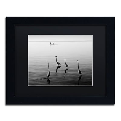 Trademark Fine Art 4 Herons and Boat by Moises Levy 11 x 14 Black Matted Black Frame (886511873476)
