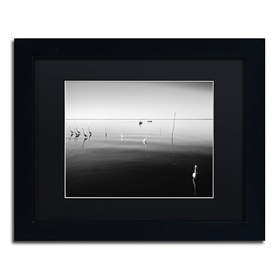 Trademark Fine Art 11 Herons by Moises Levy 11 x 14 Black Matted Black Frame (886511873711)