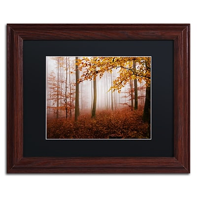 Trademark Fine Art Breathe Me by Philippe Sainte-Laudy 11 x 14 Black Matted Wood Frame (886511796140)