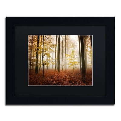 Trademark Fine Art Calmness by Philippe Sainte-Laudy 11 x 14 Black Matted Black Frame (886511796263)