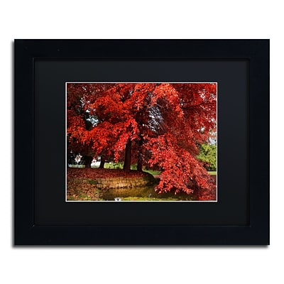 Trademark Fine Art October by Philippe Sainte-Laudy 11 x 14 Black Matted Black Frame (886511797963)