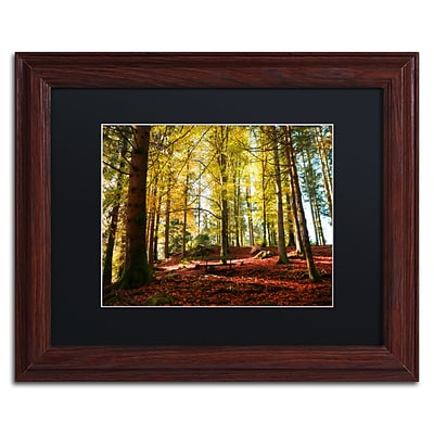 Trademark Fine Art The Autumn Bench by Philippe Sainte-Laudy 11 x 14 Black Matted Wood Frame (886511799042)