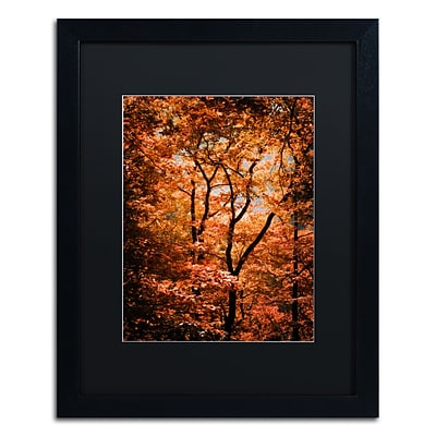 Trademark Fine Art Autumn Whispers by Philippe Sainte-Laudy 16 x 20 Black Matted Black Frame (886511795983)