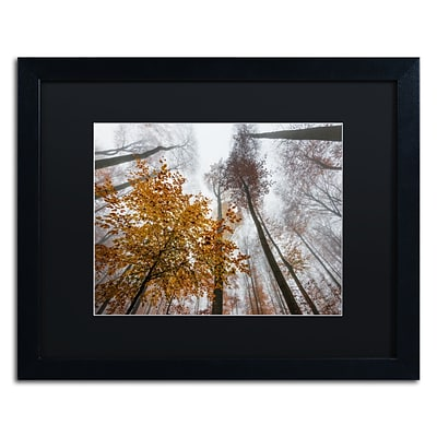 Trademark Fine Art Daydreamer by Philippe Sainte-Laudy 16 x 20 Black Matted Black Frame (886511796386)