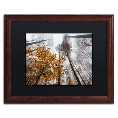 Trademark Fine Art Daydreamer by Philippe Sainte-Laudy 16 x 20 Black Matted Wood Frame (886511796454)