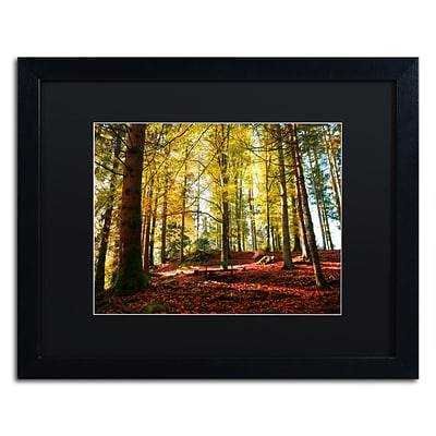 Trademark Fine Art The Autumn Bench by Philippe Sainte-Laudy 16 x 20 Black Matted Black Frame (886511798984)