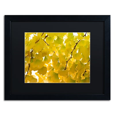 Trademark Fine Art Yellow Autumn by Philippe Sainte-Laudy 16 x 20 Black Matted Black Frame (886511799882)