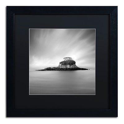 Trademark Fine Art Rat Island by Moises Levy 16 x 16 Black Matted Black Frame (886511876613)